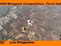 WingsuitCompetition.com - 2nd Artistic Wingsuit Competition (International Category)
