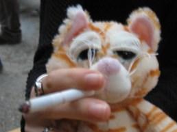 A dohányzó macska