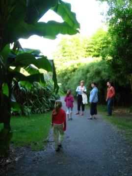 Európa legnagyobb botainkus kertjében Brestben