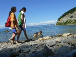 Kavicsos tenger part kutyával