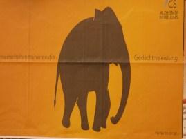 Sárga elefánt - reklám