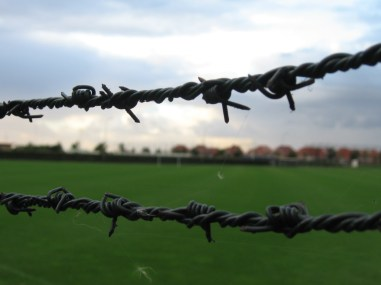 Barbed wire of Dronten