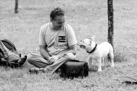 bulldog piknik-0788