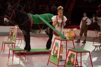 cirkusz-4399