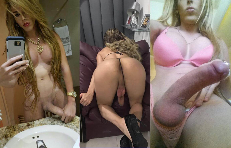cisne escort transexual venezolana dotada