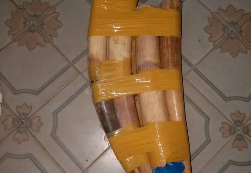 Un trafiquant d'ivoire saisi à Oyem