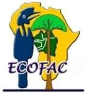 ECOFAC 6: Un instrument d'aide à la préservation de la biodiversité en Afrique Centrale.