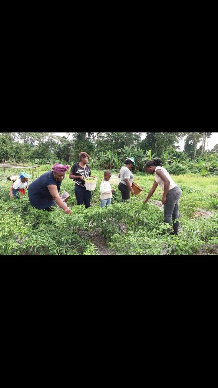 """Programme """"Former 1000 agriculteurs"""": deux mois après le lancement de la formation"""