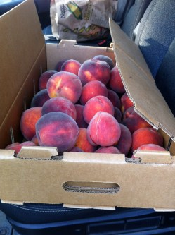 Box 'o peaches