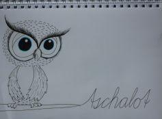 Motive, Cute Owl
