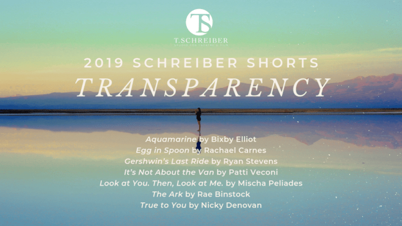 Banner for the 2019 Schreiber Shorts festival with the theme Transparency. Aquamarine by Bixby Elliot Egg in Spoon by Rachael Carnes Gershwin's Last Ride by Ryan Stevens It's Not About the Van by Patti Veconi Look at You. Then, Look at Me. By Mischa Peliades The Ark by Rae Binstock True to You by Nicky Denovan