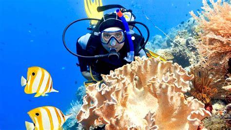 crystal waves scuba diving phuket padi 5 star