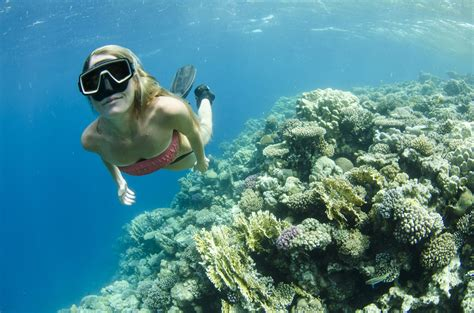 top 5 thailand diving destinations