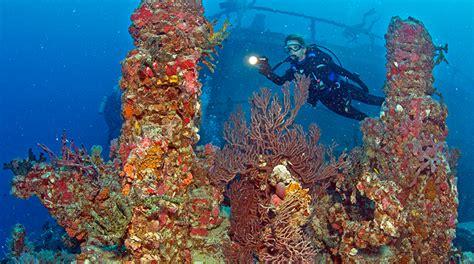 5 top places dive florida keys forbes travel