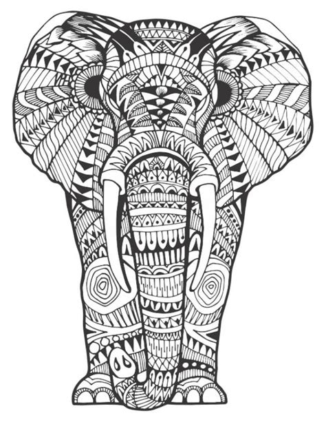 168 elephant coloring pages adults images