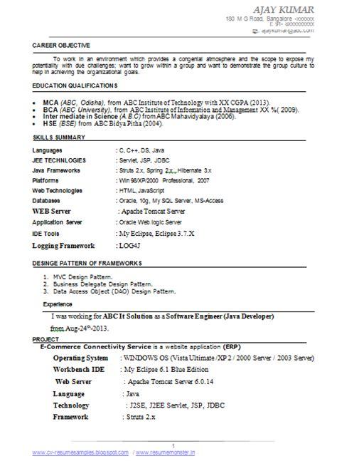 10000 cv resume sles free download