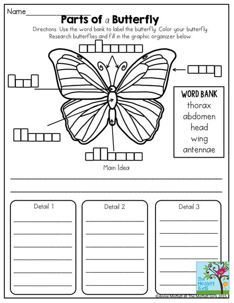 parts butterfly great science activity grade prep packet