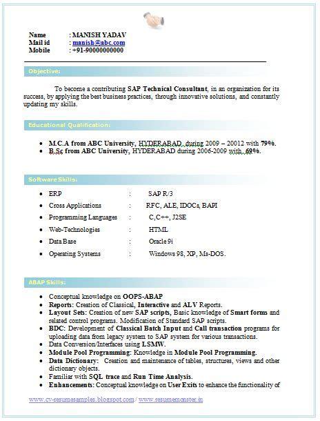 professional curriculum vitae resume template job seekers sle