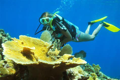 beginner scuba