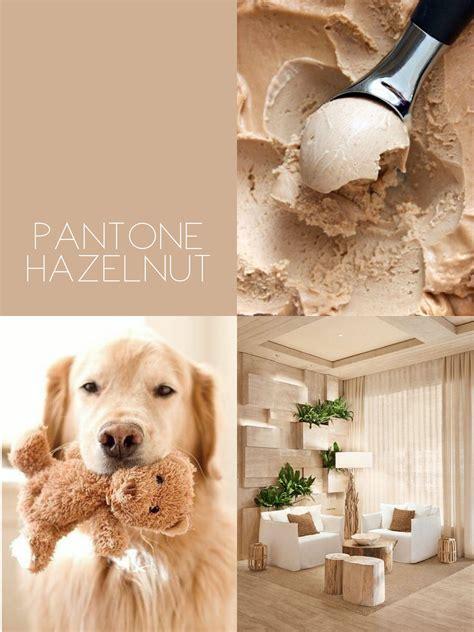 soft brown tan pantone hazelnut home wall colour