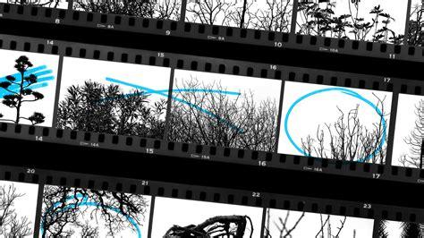 create contact sheet adobe photoshop tutorials