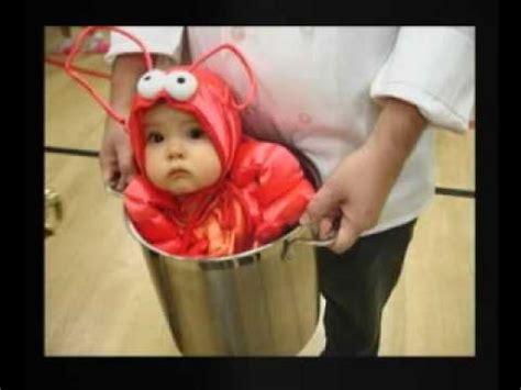 cute baby halloween costumes youtube