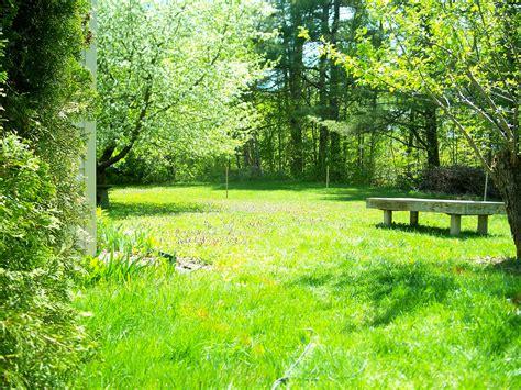 Backyard Background