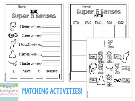 senses worksheets grade 2
