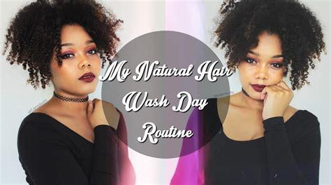 My Natural Hair Wash Day.html