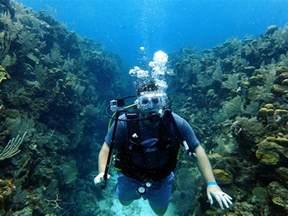 scuba diving company roatan honduras uponarriving