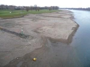 Junges Plastik & alte Scherben beim Rhein Niedrigwasser Beach Cleanup