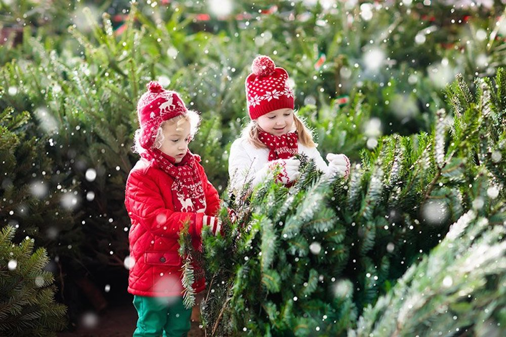 Christmas-outdoor-activities-will-make-the-holiday-more-special