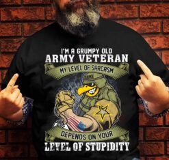 Grumpy Old Army Veteran Shirt Sarcasm Depends Stupidity