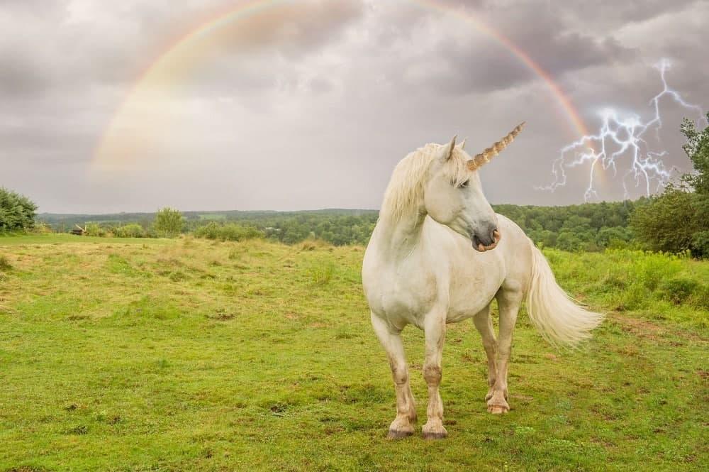 Keep-on-reading-the-great-unicorn-symbolism.