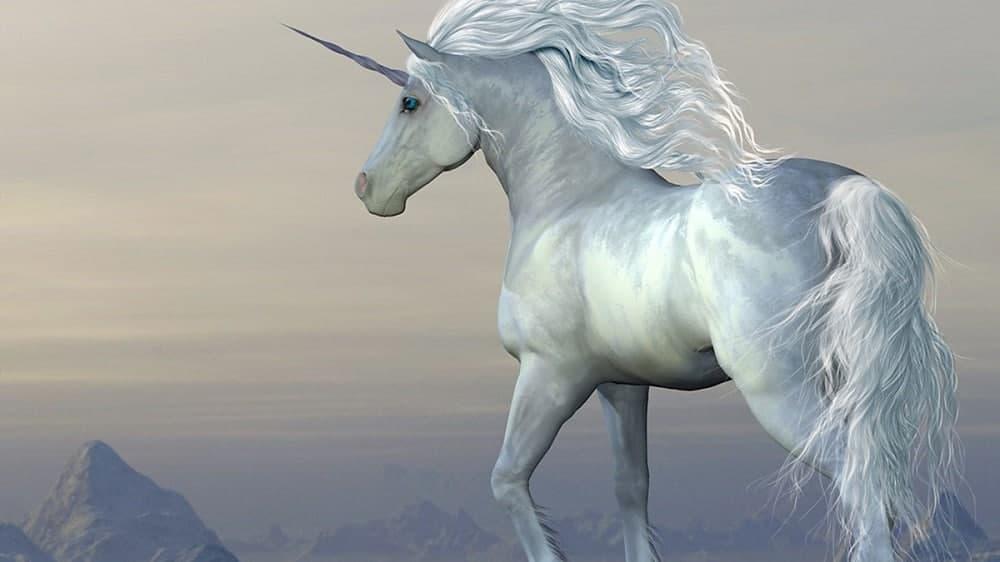 The European Unicorn