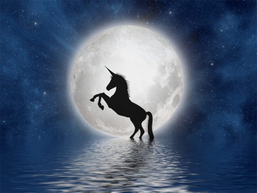 Unicorn facts you shouldn't miss