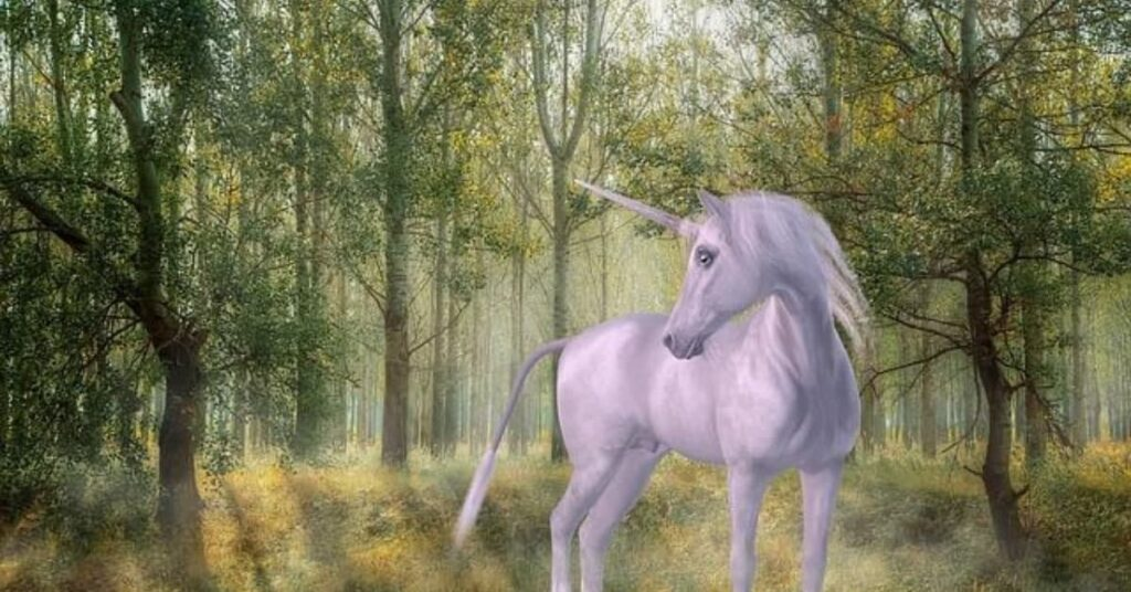 Unicorn-facts-you-shoulnt-miss
