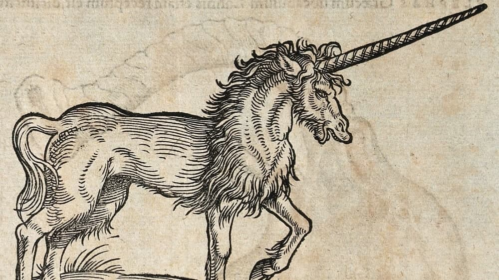 Have-you-ever-wondered-are-unicorns-real-