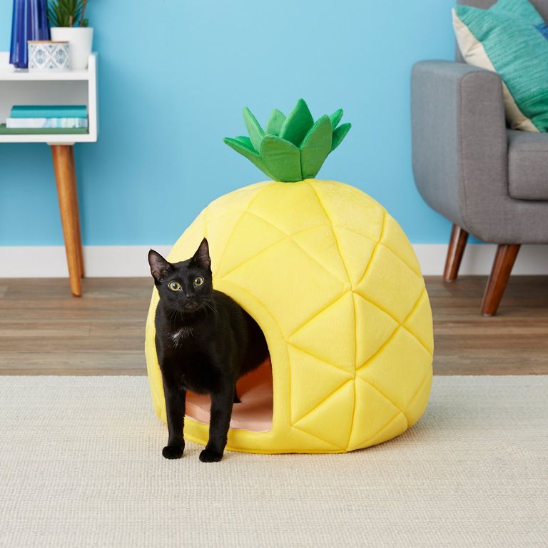 Pineapple Covered Cat Bed gift for cat lover
