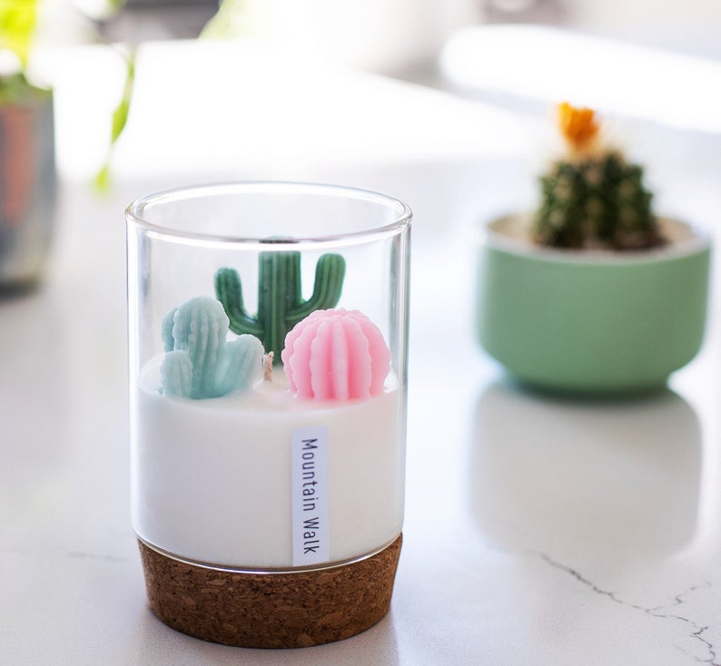 Terrarium and Poppy Candles- great holiday gifts for teacher.