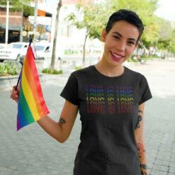 LGBT Gay Pride Flag Love Is Love Shirt