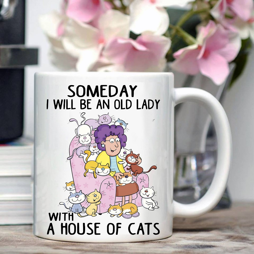 Old Lady Cat Mug An Old Lady With A House Of Cat- best cat mom gifts