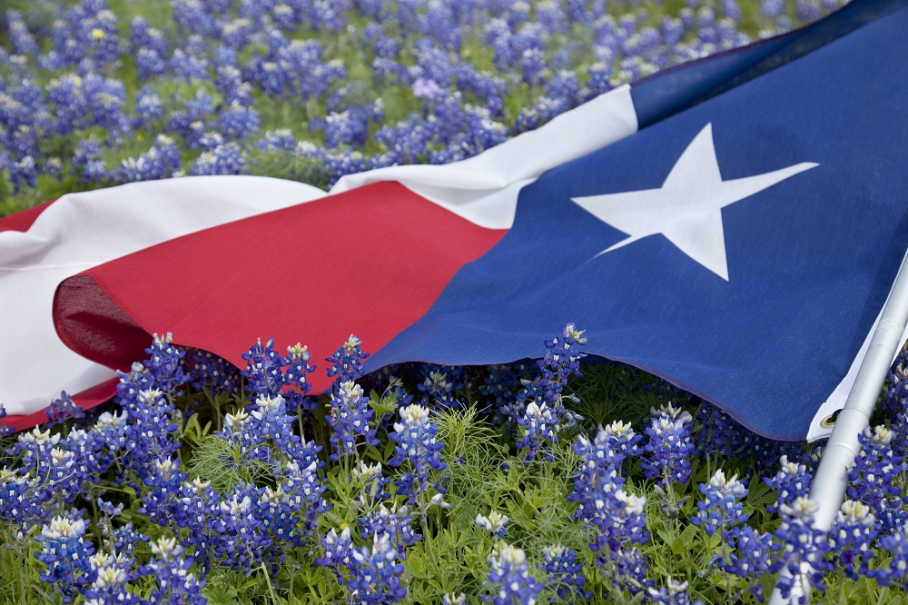 Why is Texas Independence Day on March 2 annually