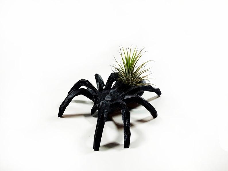 Black Spider Air Plant Holder- best Halloween gift 2021