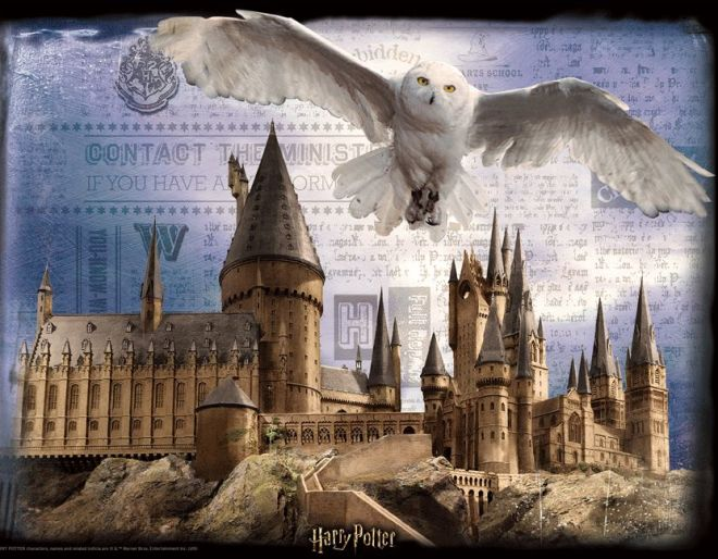 Harry Potter Super 3D Puzzle Best Halloween Gift For Kids
