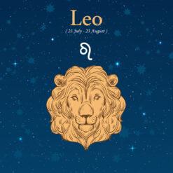 Leo Birthday Gift