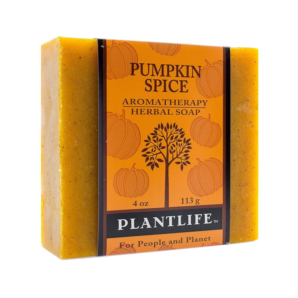 Pumpkin Spice Natural Soap