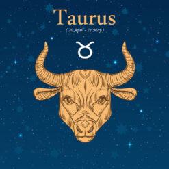Taurus Birthday Gift