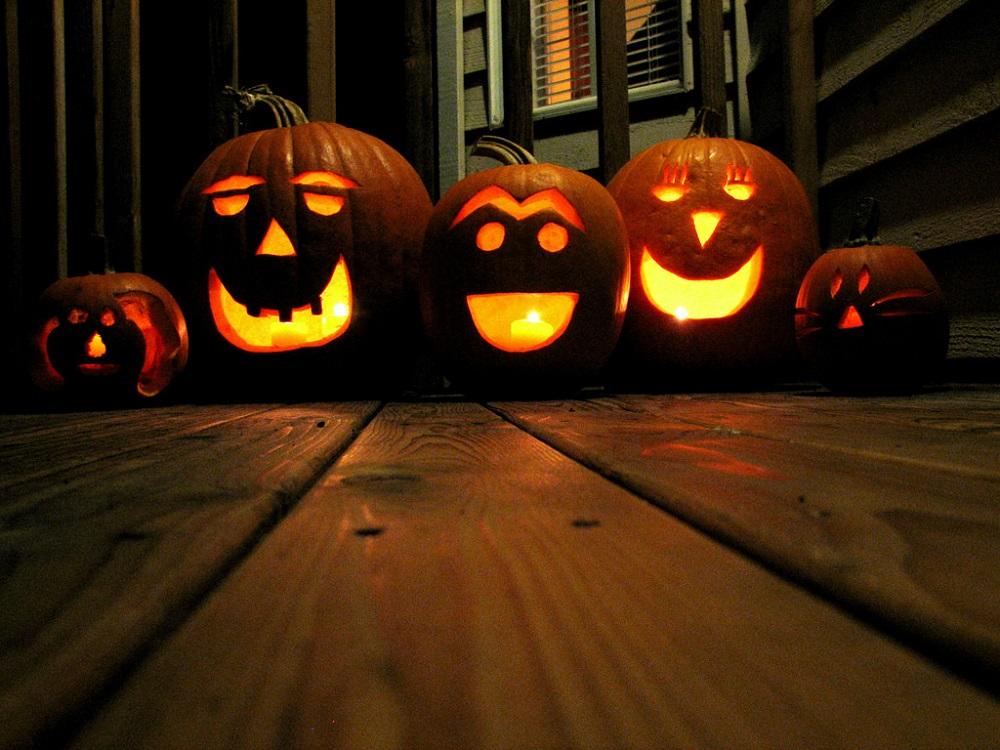 Halloween Pumpkin Patch Hunting Game