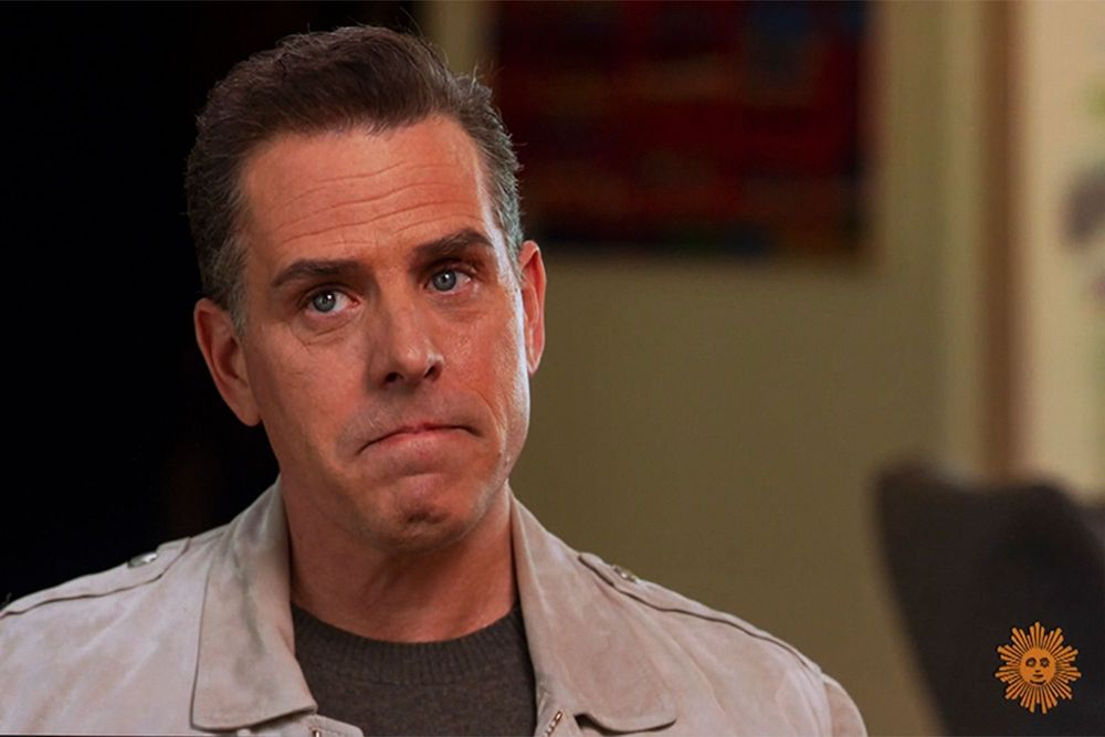 """""""Hunter Biden Without Mask"""" was shared on Twitter by storm"""